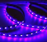 Светодиодная светодиодная лента SMD5050 Q60 Ультрафиолетовая