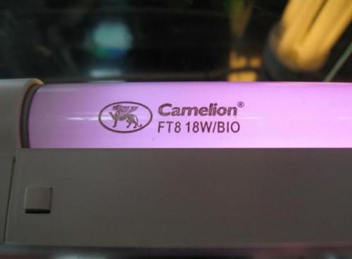 Люминесцентная лампа для растений BIO 18Вт 604мм